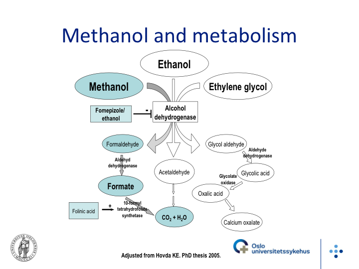 toxic_alcohol_metabolism