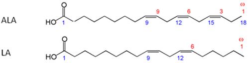 omega-3-fatty-acid-structure